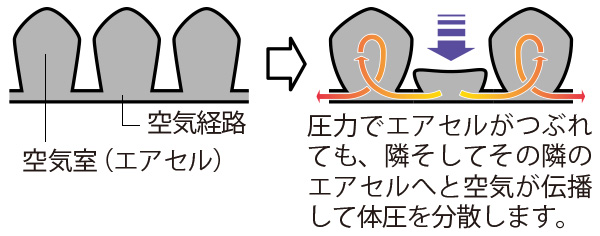 ロホクッションは、多数の柔軟なエアセルの中を空気が移動して、優れた除圧効果を発揮します。