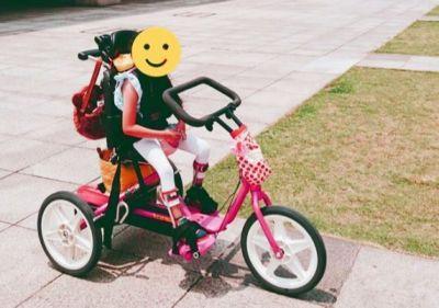 trycycle9.jpg